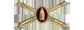 Coast Artillery Corps (1901-1950)