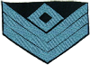Company First Sergeant (Infantry)