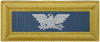 Colonel (Infantry)