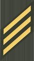 Three Service Stripes