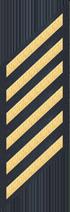 Six Service Stripes