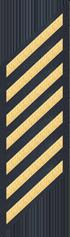 Seven Service Stripes