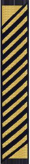 Thirteen Service Stripes