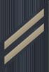 Two Service Stripes