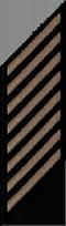 Eight Service Stripes