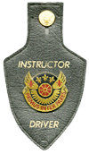 106th TB 37th TG Instructor Driver Badge