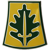 800th Military Police Brigade