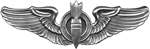 AAF Bombardier Badge