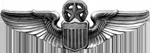 AAF Command Pilot Badge