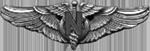 AAF Flight Nurse Badge