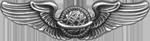 AAF Navigator Badge