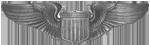AAF Pilot Badge