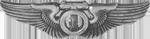 AAF Technical Observer Badge