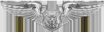USAF Officer Aircrew (Basic)