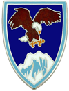 USAE Combined Forces Command Afghanistan