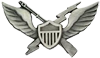 Air Assault Badge 11th AAD 1964