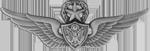 Aviation Badge (Master)