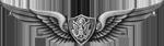 Aviation Badge (Basic)