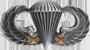 Basic Parachutist (2 Combat Jumps)