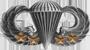 Basic Parachutist (4 Combat Jumps)