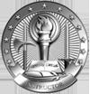 Basic Army Instructor Badge