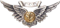 USN/USMC Combat Aircrew Wings