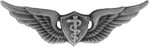 Flight Surgeon Badge (Basic)