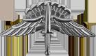 Military Freefall Parachutist