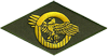 Honorable Discharge Emblem (WWII)