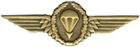 Germany Jump Wings (Bronze)
