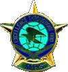 Military Postal Service