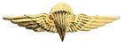 Jordan - Jump Wings