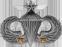Senior Parachutist (2 Combat Jumps)