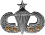 Senior Parachutist (4 Combat Jumps)