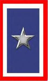 Silver Star Service Banner