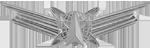 Space Badge (Basic)
