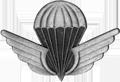 Tunisian Parachutist Badge