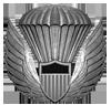 USPA Wings
