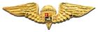 Venezuela - Jump Wings